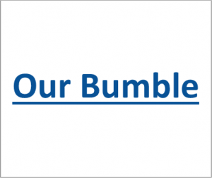 Our Bumble